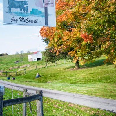 Fall break on the farm