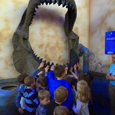 Partytime at the Denver Aquarium