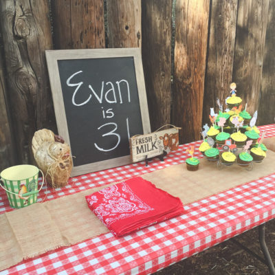 Kids Farm Party